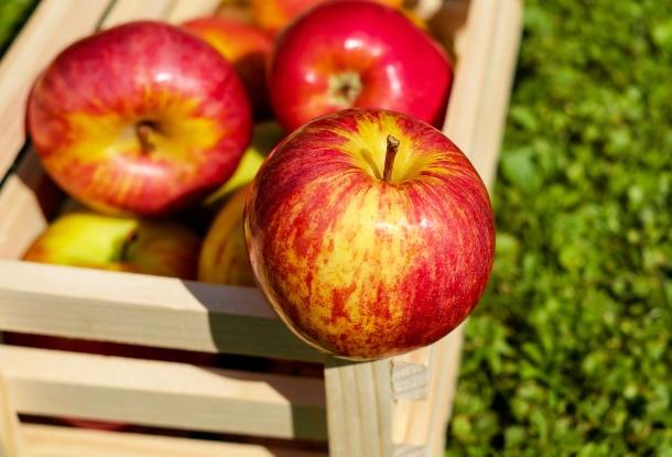 Az alma karcsúsít