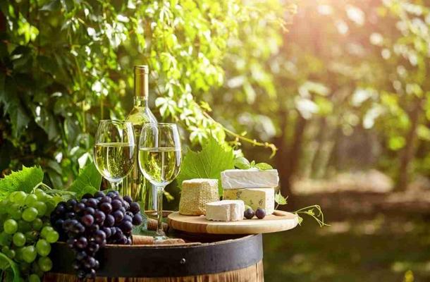 A bor élettani hatásai.