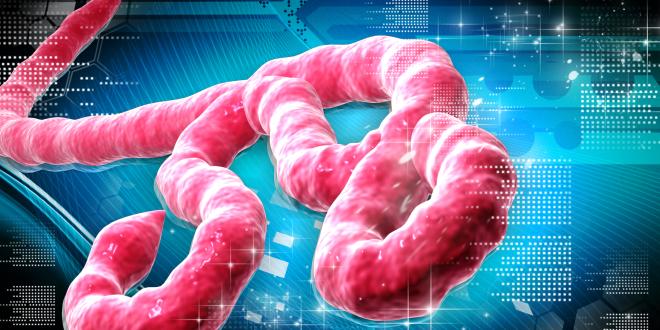 egeszsegugyelet-friss-hirek-ebola-virus-kiemelt