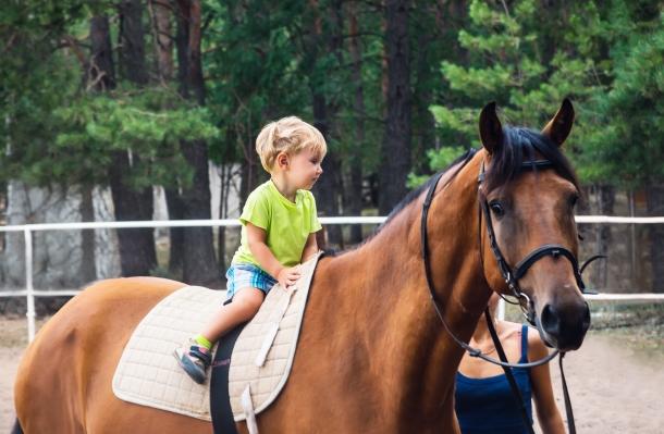 egeszsegugyelet-friss-hirek-lovasterapias-verseny-nagy1
