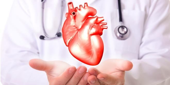D-vitamin a szív egészségéért.