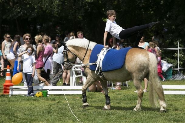 Gyógypedagógusok figyelmébe lovasterápia.