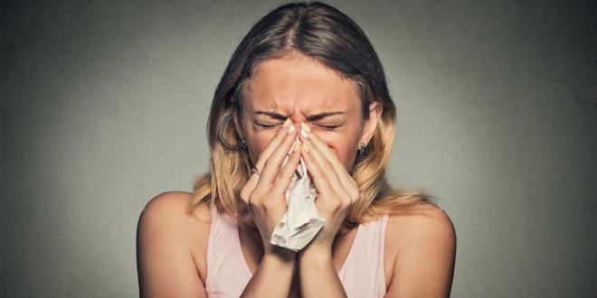 Tippek allergia ellen otthonra.