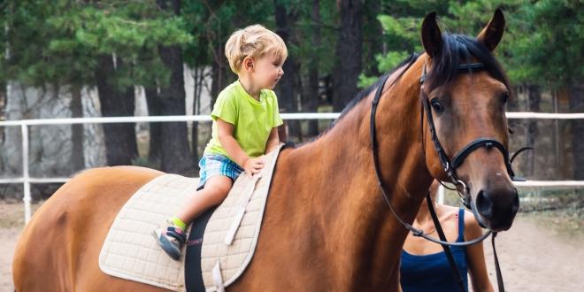 egeszsegugyelet-friss-hirek-lovasterapias-verseny-kiemelt