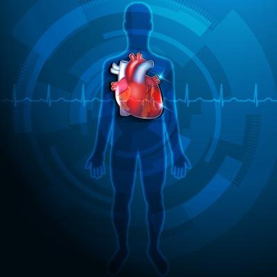 A D-vitamin sokat tesz a szív egészségéért is.