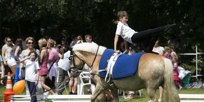 Továbbképzéseket indít a Magyar Lovasterápia Szövetség Alapítvány (MLTSZ) lovasoktatók és lovasedzők számára.