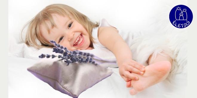 Édes álmok anti allergia és asztma parajdi sópárna csomag