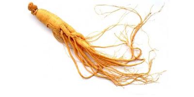 egeszsegugyelet-termeszetesen-gyogynovenyabc-ginseng-gyoker
