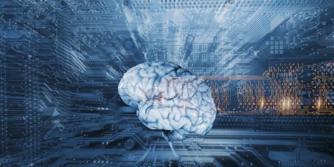 emberi-agy-egeszsegugyelet-kiemelt